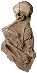 שלד ילדה שעל זרועה אצעדה שגולפה מחט של היפופוטם