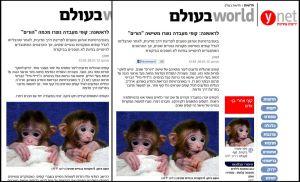 הכתבה לפני ואחרי התיקון. צילומי מסך מאתר Ynet.