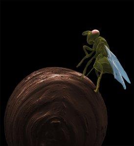 צרעה מהסוג נסוניה מטילה ביצים על גולם של זבוב