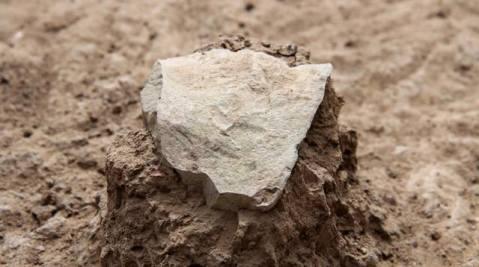 כלי אבן בתהליך חשיפה