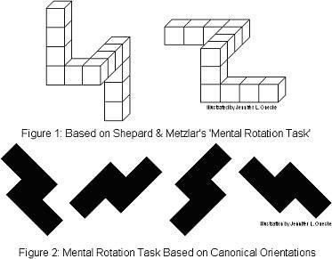 דוגמאות למבחני סיבוב מנטלי שונים